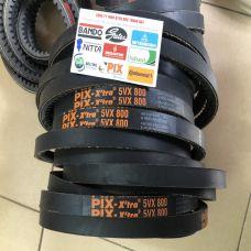 dây curoa PIX 5VX 800